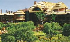 Disney's Animal Kingdom Jambo Villas