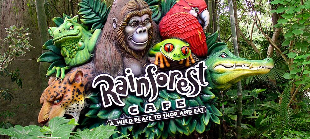 animals in rainforest. Animals Rainforest - QwickStep
